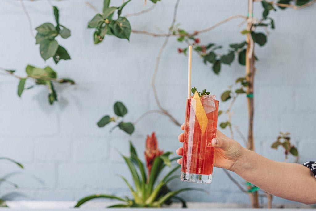 cocktails straws
